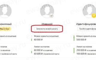 Как поменять паспортные данные в яндекс деньги