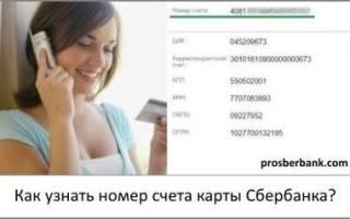 Как узнать номер лицевого счета карты сбербанка